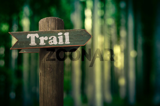 Forest Trail Sign