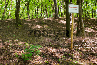 Binnendüne im Landschaftspark Herzberge, Berlin-Lichtenberg, Deutschland