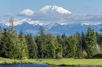 View of Mount Rainier summit Washington USA
