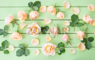 Bunte Rosenblueten