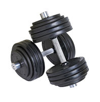 Pair of big heavy dumbbells cutout