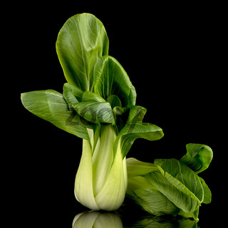 Pak choi on black