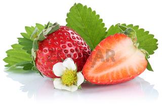 Erdbeere Erdbeeren Beeren Beere Frucht Früchte Freisteller freigestellt isoliert