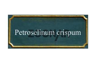 schild petersilie