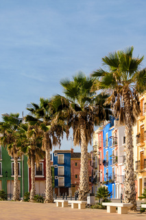 Palms and multicolored houses, Villajoyosa, Spain