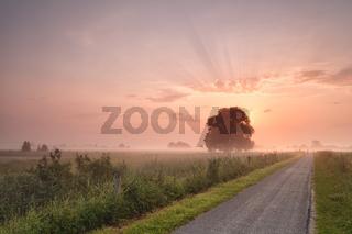 misty summer sunrise over bike road