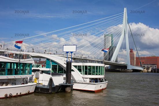 Erasmus Bridge in Rotterdam Downtown