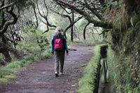 Madeira Levada Wanderung