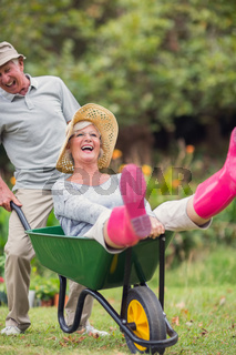 Happy senior couple playing with a wheelbarrow