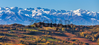 Autumnal vineyards and snowy mountains in Italy.