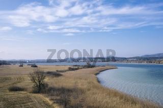 Naturschutzgebiet auf der Halbinsel Mettnau
