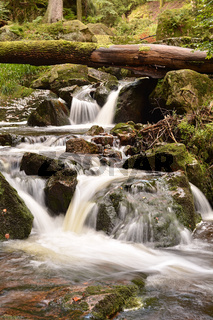 Nationalpark Harz