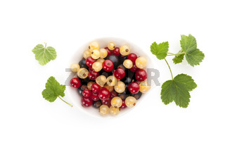 Red, white and black currant on white background.