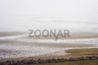 Wattenmeer im Nebel