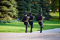 Changing guard soldiers in Alexander#39;s garden near eternal flame