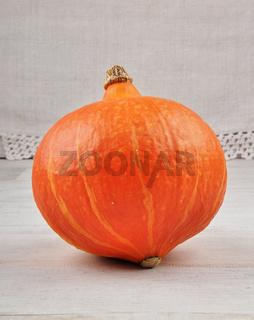 Kürbis - Pumpkin and card