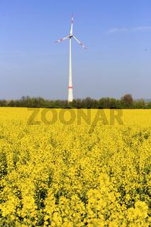 Wind wheel , Windrad