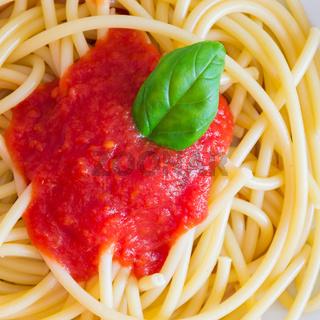 Italian spaghetti dish with tomatoes and basil
