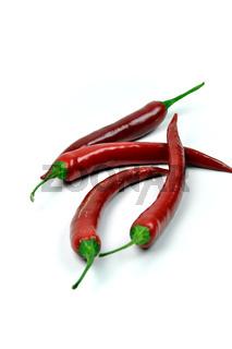 Vier rote Chilischoten freigestellt vor Weiß