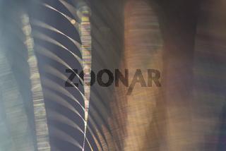 Reflexionen in einem Spinnennetz, Lappland