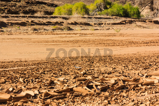 Dry riverbed with cracked surface of brown mud. Namibia