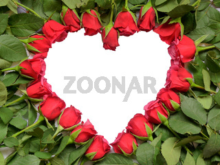 Heart made of red roses on stem