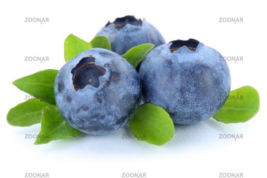 Blaubeere Blaubeeren Heidelbeere Heidelbeeren Beeren Beere Frucht Freisteller freigestellt isoliert