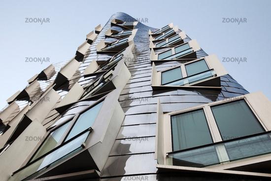 D_Gehry_17.tif