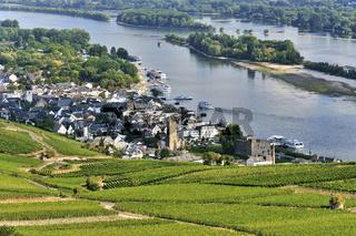 Rüdesheim am Rhein mit Weinbergen, Oberes Mittelrheintal, Deutschland