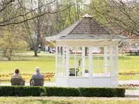 Seniors in the park