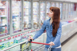Pretty woman doing grocery shopping