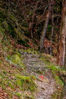 Selketal im Harz Wanderweg