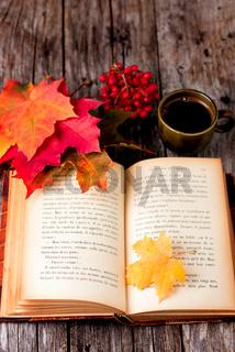 Autumn still life set on wooden table
