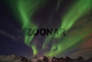 Nordlicht (Aurora borealis), Mefjorden, Senja, Norwegen