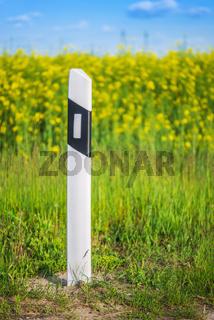 Concrete pole near road