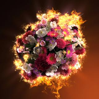 bouquet of flowers in fire