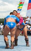 Mongolian heavy weight wrestlers