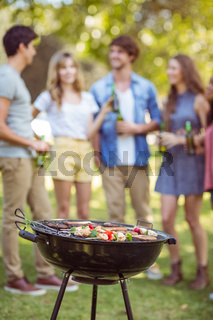Happy friends in the park having barbecue