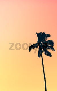 Retro Pastel Colored Single Palm Tree