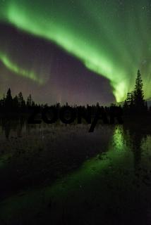 Nordlicht (Aurora borealis), Muddus Nationalpark, Welterbe Lapnia, Lappland