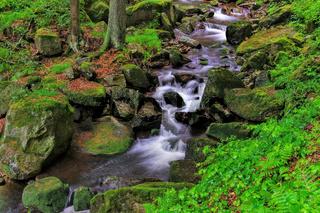 Ilsewasserfall - waterfall river Ilse