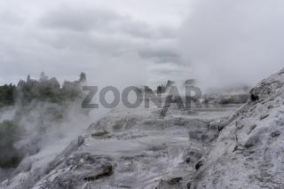 te puia geothermal valley