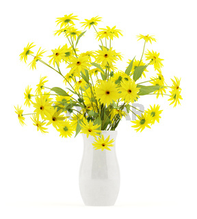 coneflowers in ceramic vase isolated on white background. 3d illustration