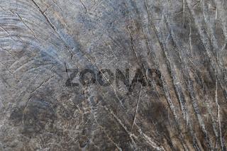 Rustikaler grau brauner Holz Hintergrund