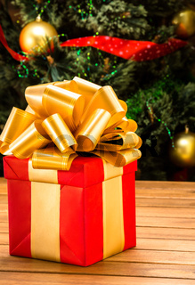New Year and Christmas present or gift