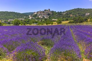 Hügellandschaft mit kleiner Ortschaft und Lavendel