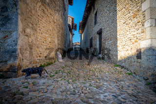Narrow alley and cat escaping, Perouges, France