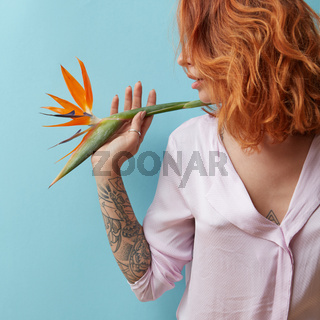 Woman with a tattoo holding an orange flower strelitzia in hands around a blue background with space for text. Valentine's day concept