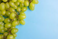 green grape on blue background