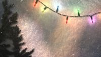 Colorful garland and Christmas green tree branches